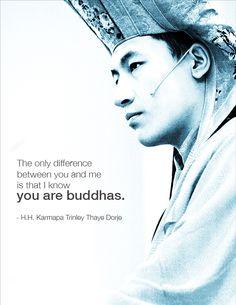 17th Karmapa of Tibetan Buddhism