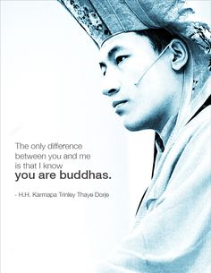 Buddhist Quote, 17th Karmapa of Tibetan Buddhism