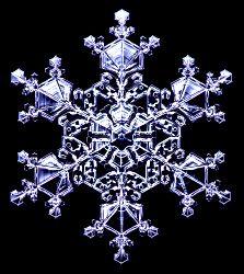 http://www.snowcrystals.com/designer/designer.html