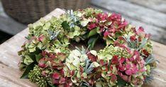 Even in autumn, hydrangeas prove their deco-tale - Floral Garden Ideas Diy Fall Wreath, Autumn Wreaths, Hydrangea Wreath, Floral Wreath, Ivy Tree, Lawn Care Tips, Ivy Plants, Drops Design, Thanksgiving Decorations