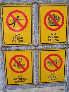 ...and, while you're at it, please don't let your fins hit the coral...and please kill a lion-fish (oops, not very Buddhist but good for the ocean).
