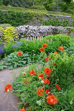 Inverewe Gardens, Scottish Highlands