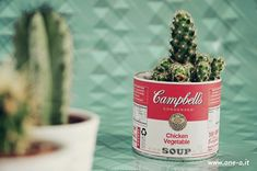 Poppytalk: 10 Spring Plant + Planter DIY Projects How cute, use a campbell soup can to plant a cactus