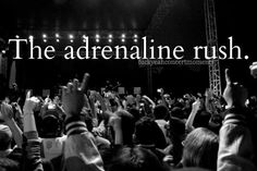 adrenaline rush of a concert..