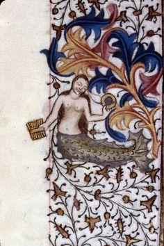 Sirene. (marge). Clermont-Ferrand BM ms 0084 Luminures