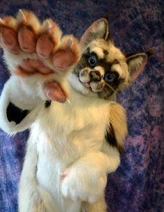 Chai the Ragdoll Cat by Beetlecat Originals