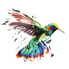 complex-bird-spred                                                                                                                                                                                 More