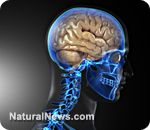 """Alzheimer's is really just 'type-3' diabetes, new research shows - """"Type-2 and type-3 diabetes is a lifestyle issue, and can be controlled or even prevented by dietary choices and avoiding too many drugs. There has also been tremendous success in controlling and eliminating diabetes through a low-carb and high-fat diet.""""  Eating more healthy saturated fats like coconut oil can help prevent, cure Alzheimer's"""