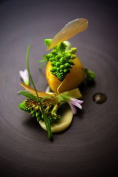 scallops-romanesco-madras-curry-david-toutain #plating #presentation
