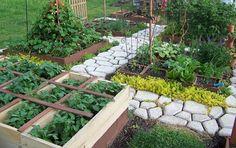 Cómo cultivar en 1 m2. ¿Será posible?