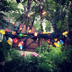 Our Garden chandelier and early summer mornings!
