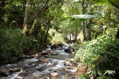 #río #cascada #valledebravo #hotel #naturaleza #bosque #rainforest #México