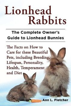Lionhead Rabbits The Complete Owners Guide to Lionhead Bunnies The Facts on How to Care for these Beautiful Pets including Breeding Lifespan Personality Health Temperamen. Lionhead Rabbit, Lionhead Bunnies, Pet Rabbit, Baby Bunnies, Bunny Rabbits, Hunny Bunny, Rabbit Toys, All About Rabbits, Rabbit Facts