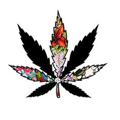 Marijuana Art, Pink Hair, Art Quotes, White Owls, Craft Projects, Hair Color, Weed, Drugs, Fun
