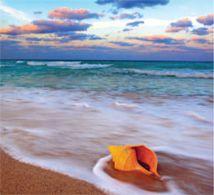 Blue Mondays - Kay Sand - Stop