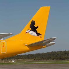 Aurigny Embraer ERJ 195
