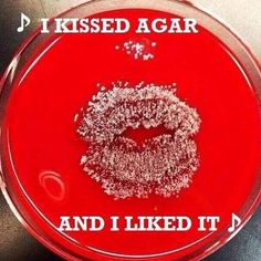 I kissed agar...
