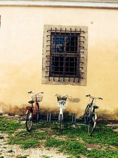bicycles in Lucca  smhphotography copyright 2013