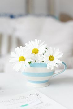 This photo can be an inspiring and first-rate idea beachcottagedesign 516295544782495869 Easter Flower Arrangements, Flower Vases, Flower Pots, Beautiful Bouquet Of Flowers, White Flowers, Beautiful Flowers, Little Flowers, My Flower, Sunflowers And Daisies