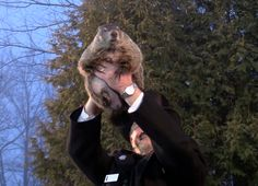 Six more weeks of winter may be on the way. You've no doubt heard by now that Punxsutawney Phil once again saw his shadow. That's what hap...