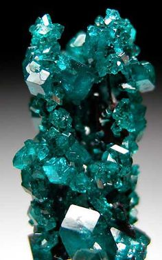 Wow that color is amazing! Dioptase from Tsumeb, Namibia Minerals And Gemstones, Rocks And Minerals, Cristal Art, Beautiful Rocks, Mineral Stone, Rocks And Gems, Healing Stones, Stones And Crystals, Earth Science