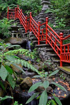 Monte Tropical Gardens #madeira #portugal