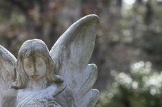 Bonaventure Cemetery Bonaventure Cemetery, Garden Sculpture, Outdoor Decor, Pictures, Photos, Grimm