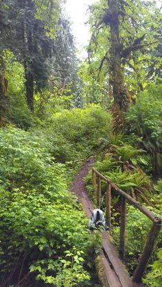 Lime kiln trail, Granite Falls, WA