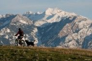 Photo of the Day: Steve Lloyd - Josh Rhea and Indy. Salt Lake City, UT.