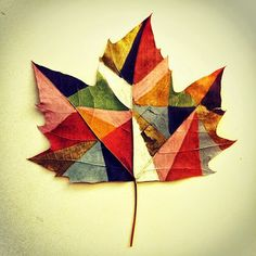 Color-blocked leaf.