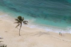 Life the beach life. #TheCoveAtlantis #beach #travel #Caribbean