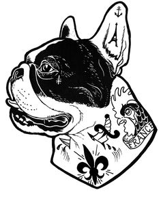 Tattooed French Bulldog …
