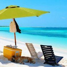 @Regrann from @turistukeando -  Comienza la semana planificando tus próximas vacaciones y aventura. Te podemos ayudar a crear un paquete adaptado a tus necesidades y presupuesto.  Nuestros contactos:  Reservaciones:  58 212 4240881/82  58 295 4171343 turistukeando@gmail.com Info@turistukeando.com  Whatsapp: 58 412 7050963/ 414 1542963/ 58 412 3926913  http://ift.tt/1iANcOy  #YoViajoLuegoExisto  #ViajoLuegoExisto #GoPro #Goprove #TravelHolic #HallazgoSemanal #Venezuela #ConocerEsCuidar #Trips…