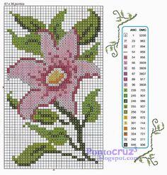 Bordados Ponto Cruz: Gráfico ponto cruz - Flor Cosmos.  #pontocruz #pontodecruz…
