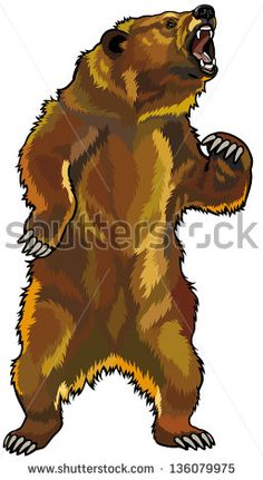 grizzly bear,rearing angry pose,front view illustration isolated on white background