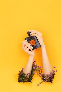 Коммерческая фотография. Курсы фотографии в Москве
