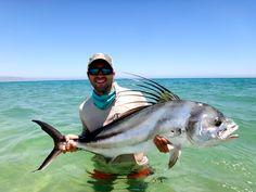 Nice trophy Baja Roosterfish (Moldy Chum)
