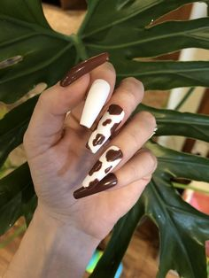 Brown Acrylic Nails, Best Acrylic Nails, Cow Nails, Acylic Nails, Leopard Nails, Sexy Nails, Fire Nails, Minimalist Nails, Dream Nails