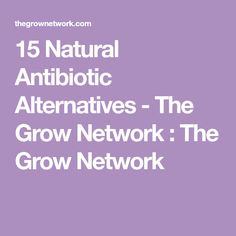 15 Natural Antibiotic Alternatives - The Grow Network : The Grow Network