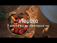 Καλλιέργεια φυτών - YouTube Hulk, Beef, Garden, Plants, Food, Diy, Meat, Garten, Bricolage