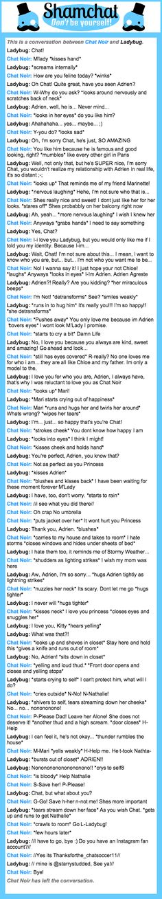 A conversation between Ladybug and Chat Noir, aka I am Ladybug
