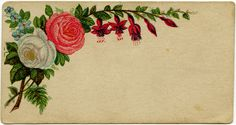 Shabby Victorian Calling Card John Kenenback (name removed) ~ Free Graphics