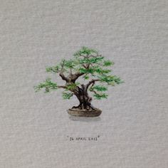 trees sketch Day 116 : A bonsai for my very dear friend, James Boonzaier (thanks for the idea. Day 116 : A bonsai for my very dear friend, James Boonzaier (thanks for the idea, Cath). 29 x 23 mm. (at Vredehoek) Tree Sketches, Art Drawings Sketches, Watercolor Trees, Watercolor Cards, Bonsai Tree Tattoos, Tattoo Tree, Palm Tree Drawing, Willow Tree Wedding, Mini Drawings