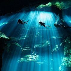 Cave diving in Cenote Chac Mool Mexico. Photo - Stephane Primatesta. #OurLonelyPlanet #Diving #Mexico Hotels-live.com via https://www.instagram.com/p/BA1r9zaxtFh/