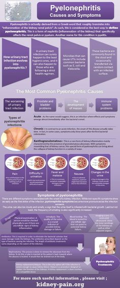 Understanding pyelonephritis, its causes, symptoms, potential treatments, and other important information about the disease Nursing Notes, Nursing Tips, Med Surg Nursing, Medical Surgical Nursing, Family Nurse Practitioner, Nursing Cheat Sheet, Medical Coding, Physician Assistant, Nursing Students
