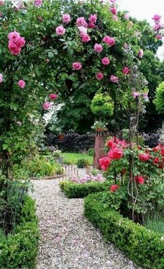cottage garten Judys Cottage Garden: How to Design a Cottage Garden.a mass of roses on an arbor could provide summertime privacy from the neighbors without looking so obvious as a privacy structure Diy Garden, Garden Cottage, Dream Garden, Garden Paths, Garden Landscaping, Garden Tips, Cottage House, Herb Garden, Small Gardens
