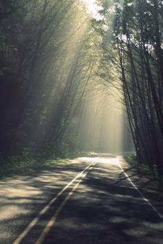 lonely highways.