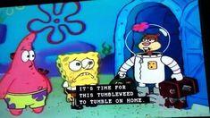 Spongebob Texas Meme - IdleMeme