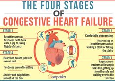 Congestive Heart Failure (CHF): Symptoms, Stages, Life Expectancy Congestive Heart Failure: Prognosis and 5 Simple Steps to Improve Life Expectancy. Learn about Symptoms, Stages and Alternative Treatment Options Congestive Heart Failure Stages, Heart Failure Symptoms, Stages Of Heart Failure, Right Sided Heart Failure, Heart Disease Symptoms, End Stage Heart Failure, What Is Heart Failure, Chf Symptoms, Heart Failure Treatment