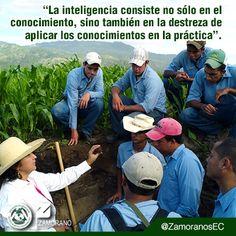 """""""La inteligencia consiste no sólo en el conocimiento, sino también en la destreza de aplicar los conocimientos en la práctica""""."""